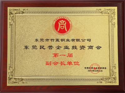 东莞民营企业投资商会副会长单位